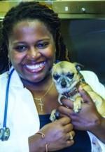 Animal Medical Center of Asheville